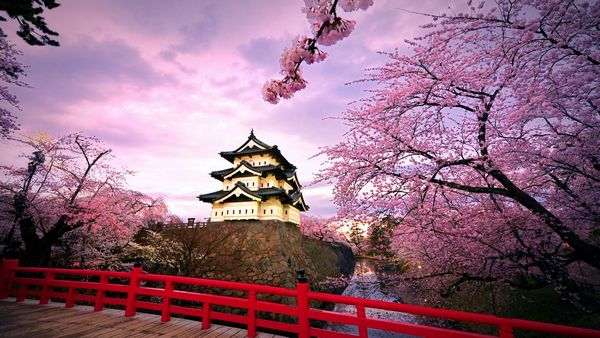 Enchanting_Japan_during_Springtime